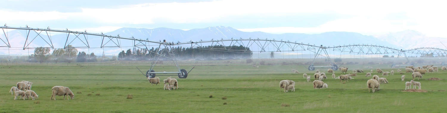 Farm Design and Planning under a Pivot Irrigation